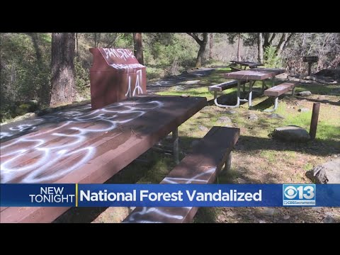 National Forest Vandalized