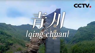 《中国影像方志》 第728集 四川青川篇| CCTV科教 - YouTube