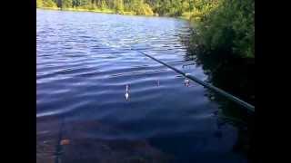Рыбалка на ротана для новичков . Видео блок #1