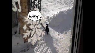 видео Украшаем окна к Новому году и Рождеству