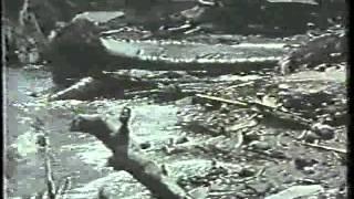 023: Erupción Monte Pelée, Islas Occidentales, Martinica : 1902