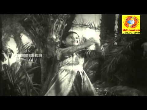 Koottililam Kili Kunjattakili | Laila Majnu | Malayalam Film Song