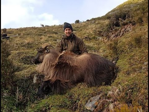 New Zealand 2017 Tahr Ballot Hunting