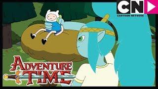 Время приключений | Мама говорила | Cartoon Network