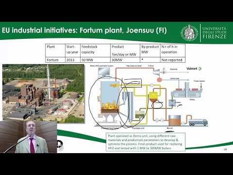 Advanced Biofuels, Pyrolysis & Hydrothermal Processing - Prof. David Chiaramonti