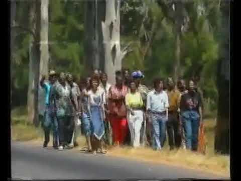 Video Artistas pela Paz - Maputo