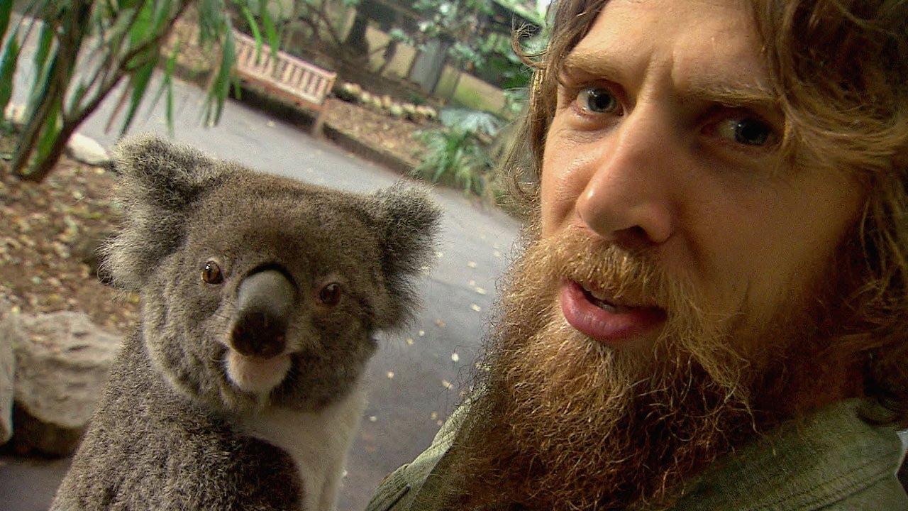 Daniel Bryan Vs. Koalas, Kangaroos and a Goat! - YouTube