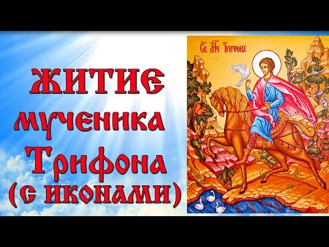 14 февраля Житие мученика Трифона (аудиокнига с иконами)