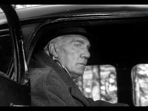 Последнее дело комиссара Берлаха (1971) детектив