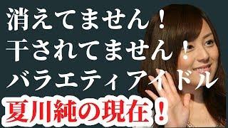 夏川純!再デビューで信じられない程ブレイクしたバラエティアイドルの今現在!【動画ぷらす】 夏川純 動画 15