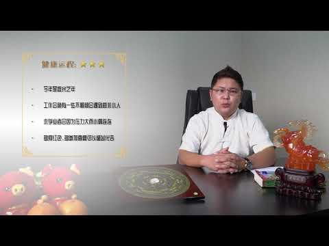 兔2019运程 - 温勤毅师傅 (Master KYB) 分享