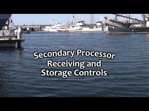 Secondary Processor Receiving and Storage Controls