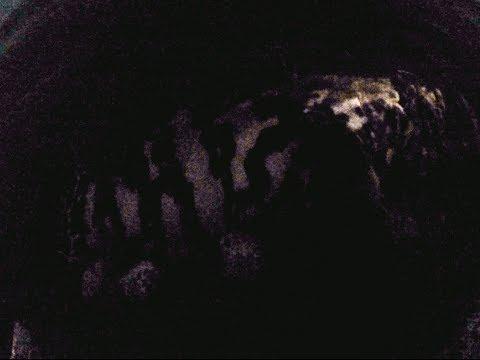 Key West  Prospecting - Permit, Tarpon, and Bonus Goliath Grouper