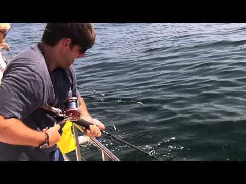 Deep Sea Fishing Orange Beach, AL
