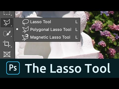How To Use The Lasso Tool In Photoshop