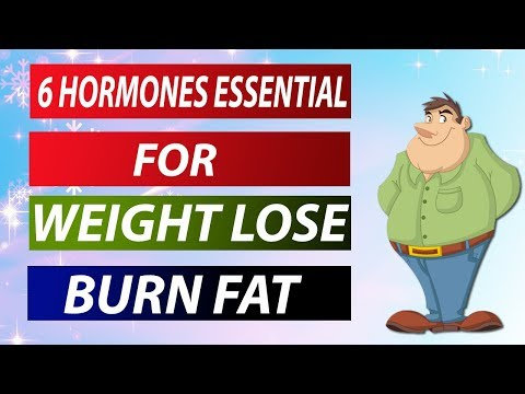 How To Lose Weight And Burn Fat Fast And Easy  – Hindi