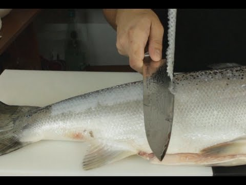 Removing Fish Scales The Japanese Way - Sharpest Knife In The World