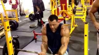 "Mike ""The Situation"" training biceps and forearms"