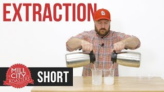 Educational Short: Brewing, How Temperature Affects Extraction