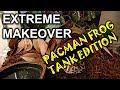 - Pacman Frog Tank Set Up | Bioactive Pacman Frog Tank