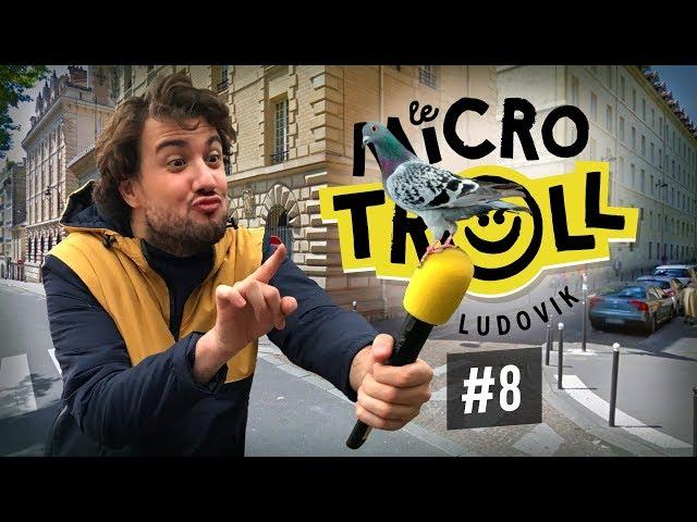 Les Français sont-ils des pigeons ? - Ludovik