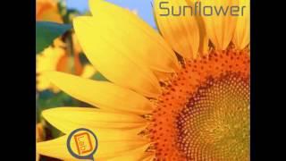 The Forest & Stimmhalt - Sunflower