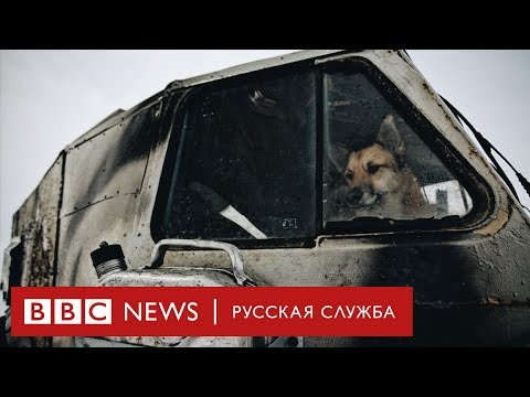 От Колымы до Воркуты: как в России умирают города