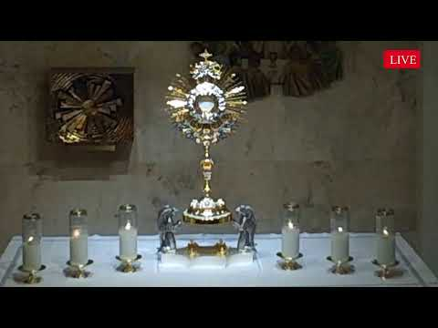 LIVE Eucharistic Holy Hour from St Agnes Chapel in Key Biscayne Florida