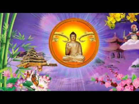 Nam Mô Dược Sư Lưu Ly Quang Vương Phật...Dược Sư Tâm Chú