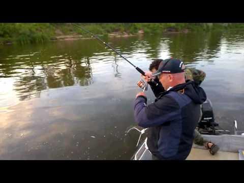 Отчет о платной рыбалке на Оке за июль. Квок, сом