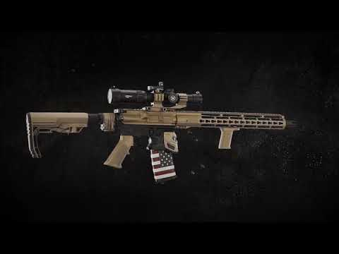 Sportsmans Guide AR-15 Event