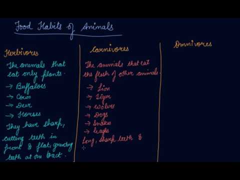 Herbivores , Carnivores & Omnivores | Class 6 Biology Food Where Does It Come From