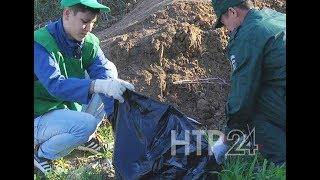 Нижнекамские школьники убрали скопившийся после пикников мусор