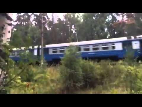 Электричка в Москву