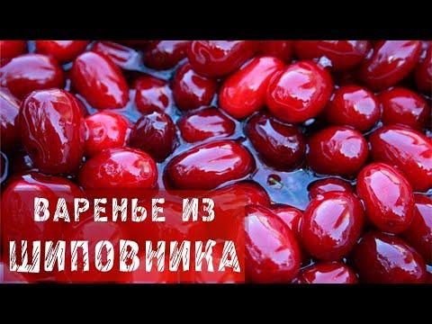 РОЗА или ШИПОВНИК (ROSA) - энциклопедия декоративных