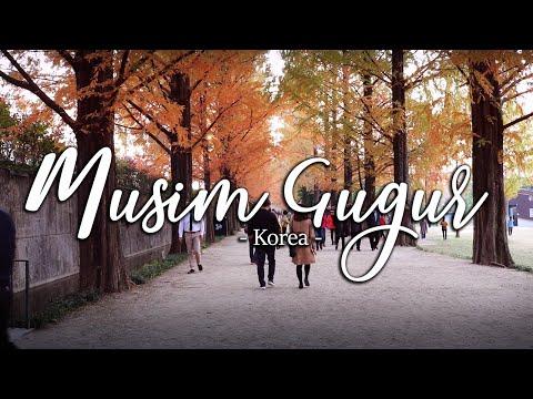tujuan-wisata-musim-gugur-di-korea-selatan