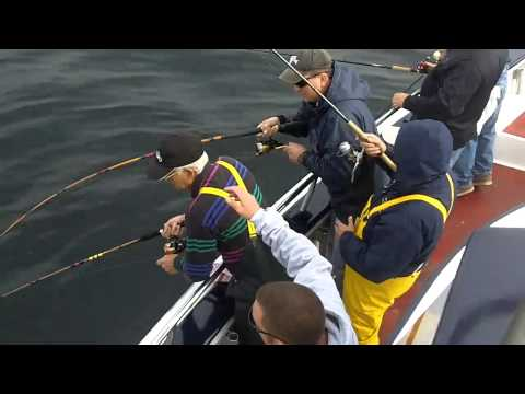 Fishermen atlantic highlands party boat blues and bass for Atlantic highlands fishing
