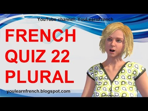 FRENCH QUIZ 22 - TEST French PLURAL nouns agreement rules singular PLURIEL des noms en français
