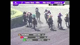 Vidéo de la course PMU PREMIO CERRO NEGRO INN