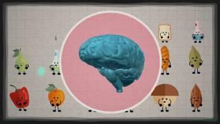 Jak pożywienie, które jesz wpływa na twój mózg   Mia Nacamulli