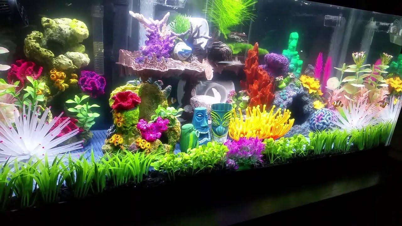 Finding nemo aquarium youtube - Aquarium nemo ...