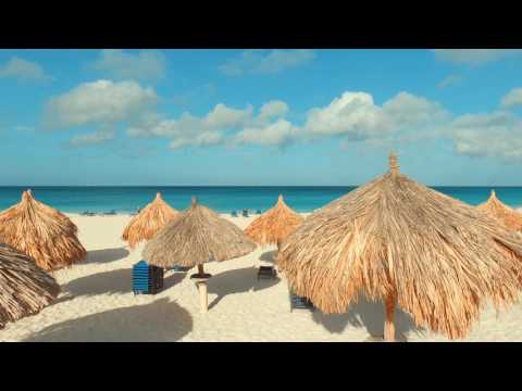 Aruba Beach Video | You Will Fall in Love with Aruba after S