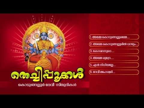 തെച്ചിപ്പൂക്കള് | THECHIPPOOKKAL | Hindu Devotional Songs Malayalam | Kodungalloor Devi Songs