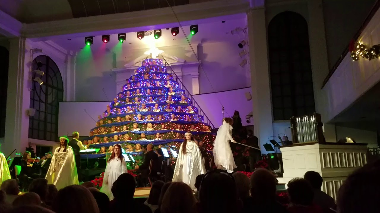 Singing Christmas Tree - Sarasota - YouTube