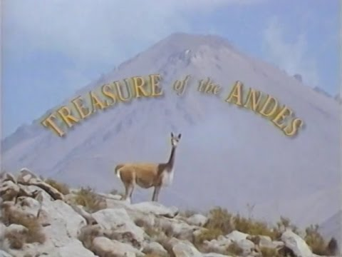 Treasure of the Andes (1993)