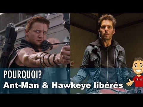 Pourquoi HAWKEYE et ANT-MAN ne sont plus en PRISON ?