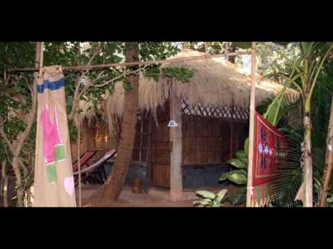 India Goa Palolem Bhakti Kutir India Hotels India Travel Ecotourism Travel To Care