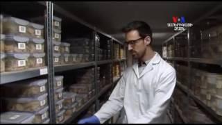 SHORT VIDEO  Մարդկային ուղեղների խոշորագույն հավաքածուն