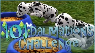 Sims 3 || 101 Dalmatians Challenge: A House Full Of Puppies! - Episode #11