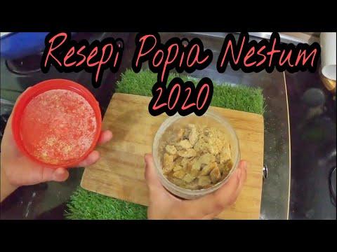 resepi-popia-nestum-2020-|-nestum-popula-recipes-2020